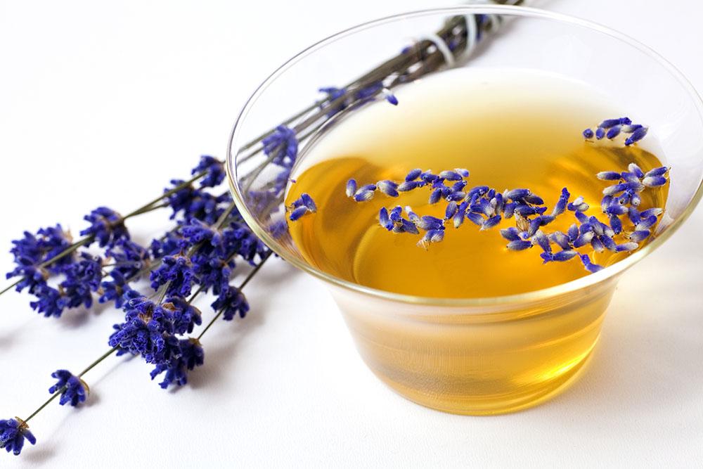 Lavendel Aromatherapie Wohlbefinden freigestellt